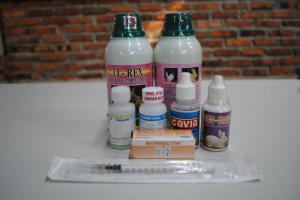 obat-obatan-kelinci-300x200